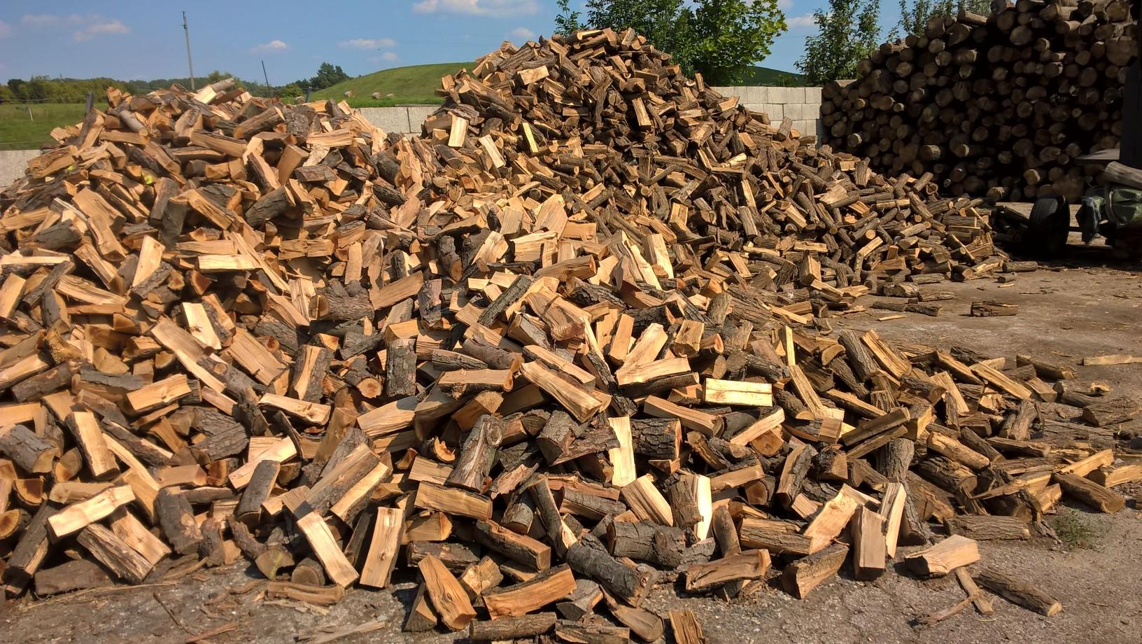 Lássa Ön is (tűzi)fától az erdőt! FA-PIAC Magánerdészeti Kft. - Természetesen gondolkodunk